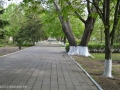 Парк - Новоджерелиевское