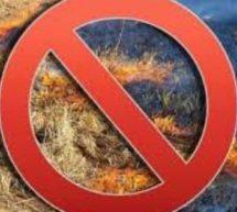 О запрете выжигания сухой травы, стерни в весенне-летний пожароопасный период