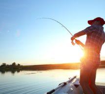 Вниманию юридических лиц, индивидуальных предпринимателей и рыбаков-любителей!