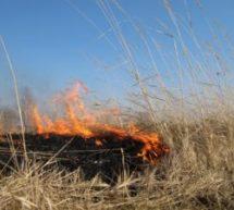 В районе объявлен четвертый класс пожароопасности!