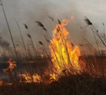 Государственный земельный надзор в предупреждении пожаров