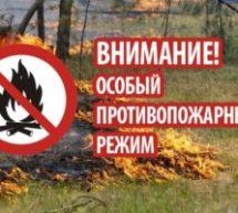 О запрете сжигания сухой травы, стерни!
