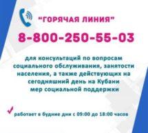 Организована работа телефона «горячей линии»!