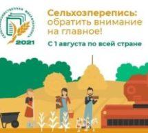 В Краснодарском крае 1 августа стартовала сельскохозяйственная микроперепись